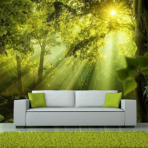 murando - Fototapete Wald 350x256 cm - Vlies Tapete - Moderne Wanddeko - Design Tapete - Wandtapete - Wand Dekoration - Natur Landschaft c-A-0077-a-a