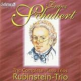 Trio in E flat major, Op. 100 D 929: Andante con moto