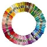 Leisial 100 Madejas de Hilos Cross Stitch Bordado Hilos Punto de Cruz Línea de Costura Coser Hilos Conjunto de Agujas Bordado de Diferentes Colores (100 color)