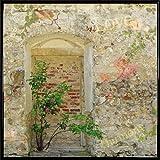 1art1 Mauern Poster Kunstdruck und Kunststoff-Rahmen - Romantische Garten-Mauer (40 x 40cm)