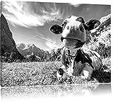 Kuh im Karwendelgebirge Kunst B&W, Format: 60x40 auf Leinwand, XXL riesige Bilder fertig gerahmt mit Keilrahmen, Kunstdruck auf Wandbild mit Rahmen, günstiger als Gemälde oder Ölbild, kein Poster oder Plakat