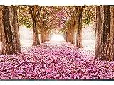 Oedim Papier Peint Auto-Adhésif | Chemin des Fleurs de la forêt | 600 x 300 cm | Décoration muraux de Chambre
