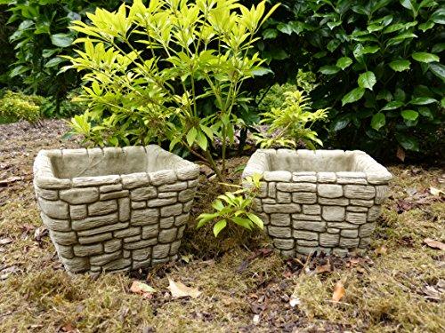 Coppia di vasi quadrato moderno/Vasi-Decorazione da giardino in pietra Scultura Statua - Roses Statua
