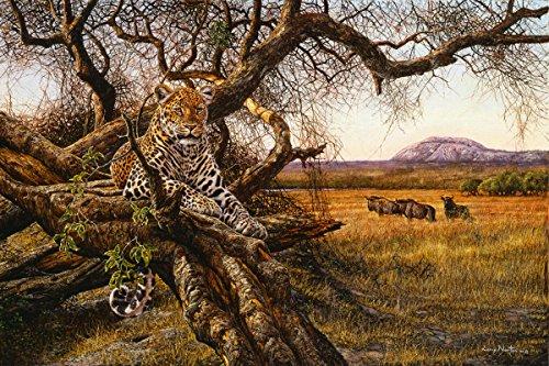 'Leopard Baum'-Print, anerkannter Simbabwe Künstler Larry Norton-Giclée Druck auf Leinwand-Größe 910mm x 610mm-Druck & Versand aus Südafrika-zugelassenen Verkäufer Tiger Print Shift