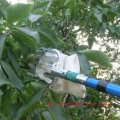 Tookie Obstpflücker, silber leicht Obstpflücker Korb swop-top Kopf für Picking Apple Orange Pear Picking Werkzeug Pear Cutter