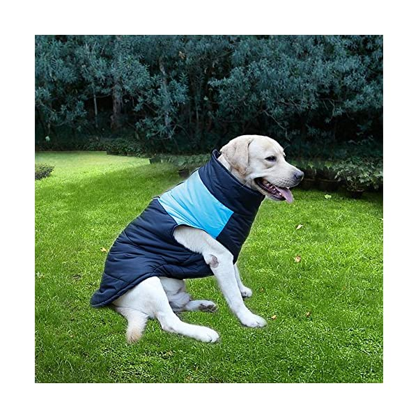 TFENG Waterproof Dog Coats Padded Puffer Jackets with D-Rings for Leash 4 Colors XS-5XL 8