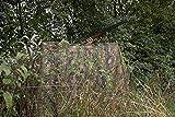 Jack Pyke - Filet d'affut / Filet de Camouflage Foret - 4m x 1.5m