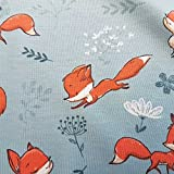 Stoff Baumwolle Jersey Meterware blau grau Fuchs orange