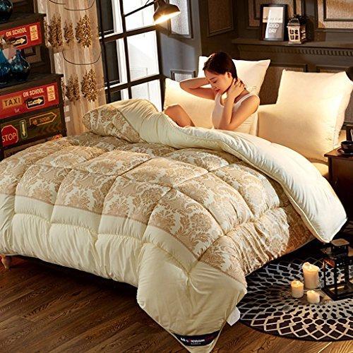 MMM Quilt Winter Quilt Core plus épais Garder un coton chaud Double chambre étudiante individuelle Literie de printemps et d'automne (taille : 180 * 220cm(2.5kg))