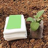 100pcs biodegradabili Seed Nidi Borse scuola materna vasi da fiori di verdure Transplant allevamento vasi da giardino orticoltura sacchetti sacchetto Vaso da fiori