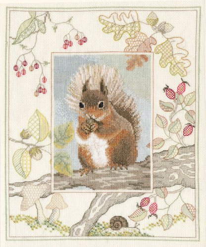 derwentwater-wildlife-series-red-squirrel-counted-cross-stitch-kit-14-count-aida-by-derwentwater-des