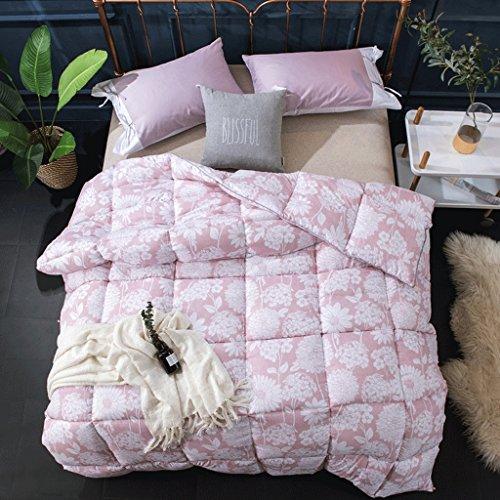 MMM Quilt Winter Thicker Student Dormroom Quilt individuel 4kg Gardez le printemps chaud et le ponçage d'automne Quilts ( taille : 220*240cm(3.5kg) )