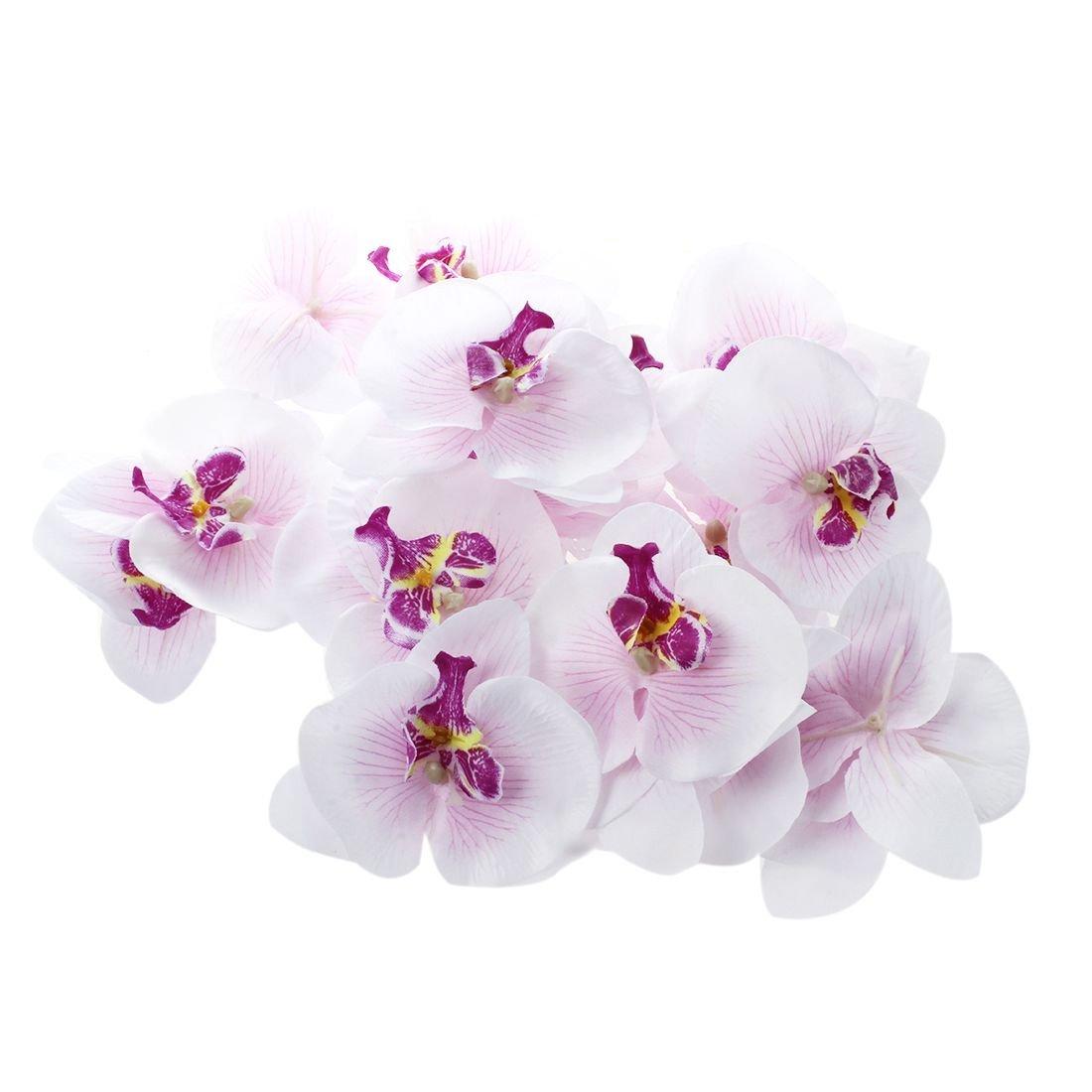 SODIAL Lote de 20 pcs de Mariposa Orquidea de 9 cm Cabeza de Flor Artificial Decoracion para Boda Accesorio para Broche para el Pelo