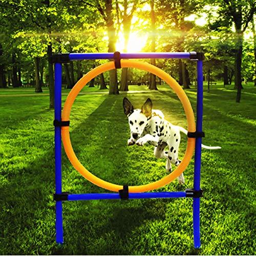 Equipos De Agilidad para Mascotas Saltos - Perros Juegos Al Aire Libre Agility Exercise Equipo De Entrenamiento Agility Starter Kit Jump Hoop Hurdle Bar