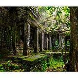 murando - Fototapete 3d Effekt 350x256 cm - Vlies Tapete - Moderne Wanddeko - Design Tapete - Wandtapete - Wand Dekoration - Preah Khan Natur Wald Baum d-B-0323-a-a