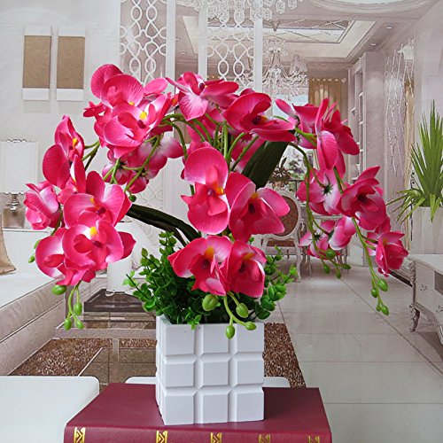 LIXIAOXIN Ornamente False Butterfly Orchid Simulation Dekoration Bonsai Rot