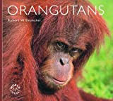 Orangutans (Worldlife Library)