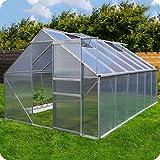Aluminium Gewächshaus mit Fundament verschiedene Modelle Treibhaus Garten Pflanzenhaus Alu Tomatenhaus (250x370, Silber)