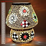 EarthenMetal Handcrafted Crystal Decorated Floral Design Glass Table Lamp (Multicoloured)