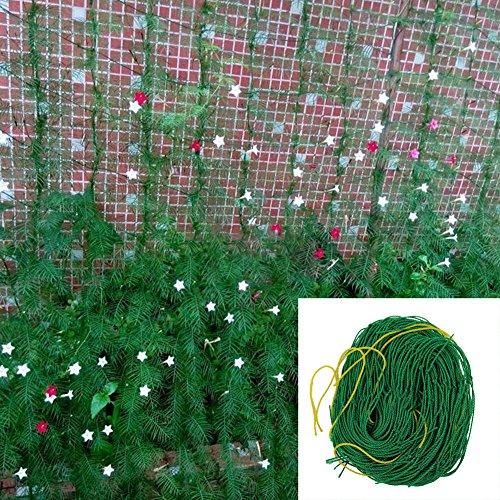 Rete di nylon di 1,8 m x 1,8 m, per piante rampicanti, vigne e vegetali