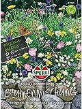Blumenmischung, Schmetterlingswiese