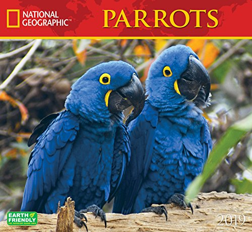 Cal 2019 National Geographic Parrots