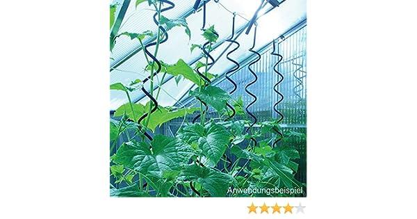 Pflanzenspirale für Juliana Gewächshaus
