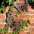Schmetterlinge Lebenslust 2er Set von Gärtner Pötschke bei Du und dein Garten