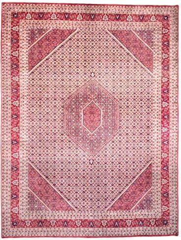 Nain Trading Indo Bijar 403x308 Annodato a Mano Rosso Tappeto Orientale Rosso Mano rosa India 376350