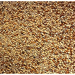 MALTBY'S STORES 10KG MIXED MILLETS FINCH SEED