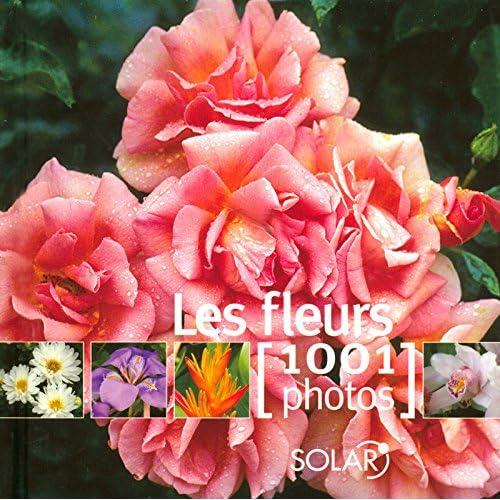 Les fleurs en 1001 photos