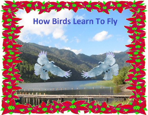 How Birds Learn To Fly (English Edition)