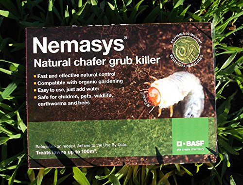 nemasys-chafer-grub-killer-100sqm-spring-application