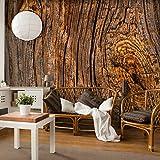 decomonkey | Fototapete Holz 400x280 cm XXL | Design Tapete | Fototapeten | Tapeten | Wandtapete | moderne Wanddeko | Wand Dekoration Schlafzimmer Wohnzimmer | FOB0169a84XL