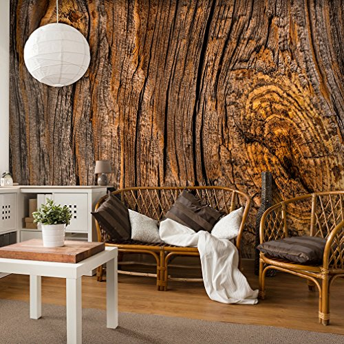 decomonkey | Fototapete Holz 250x175 cm XL | Design Tapete | Fototapeten | Tapeten | Wandtapete | moderne Wanddeko | Wand Dekoration Schlafzimmer Wohnzimmer | FOB0169a5XL