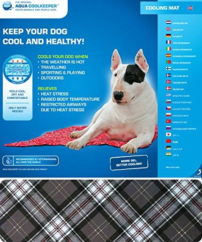 estera-de-refrigeracion-para-perro-mantener-a-tu-mascota-fresco-en-el-calor-humedo-perros-escoces-gr