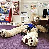 Banabear Lerosier Nounours Peluche géants de 130 à 340 cm !! Teddy Bear Ourson Ours Immense (340 cm)