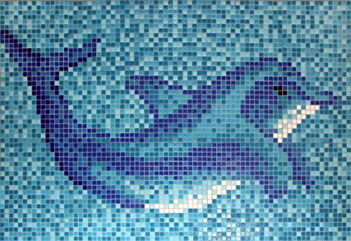 colle-mosaque-piscine-piscine-carrelage-mosaque-verre-image-dauphin-de-papier-1photo