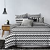 DecoKing 84496 Bettwäsche 135x200 cm mit Kissenbezug 80x80 schwarz weiß geometrisches Muster Bettbezüge Microfaser Bettwäschegarnituren black white Hypnosis Collection Waves