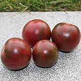 10 Samen Violet Jasper Tomate – dunkelrote Tomate mit grünen Streifen, ertragreich