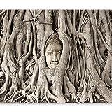 murando - Fototapete 400x280 cm - Vlies Tapete - Moderne Wanddeko - Design Tapete - Wandtapete - Wand Dekoration - Buddha Bäume h-B-0061-a-a