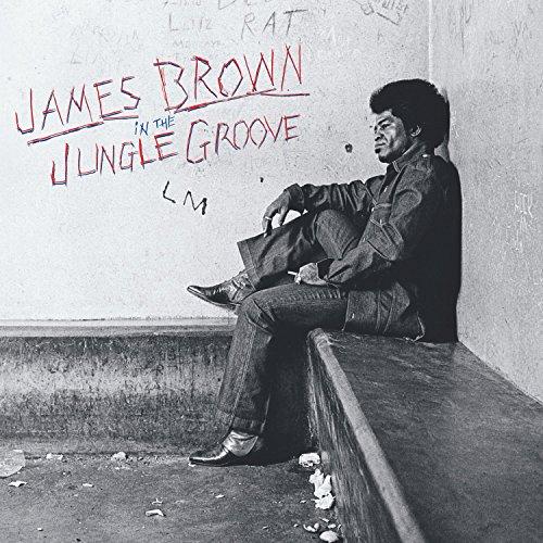 In the Jungle Groove [Vinyl LP]