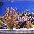 Mayitr 46cm Rhodo künstliche Aquarium Deko Pflanzen Wasserpflanzen Aquariumpflanzen
