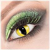 Giftauge Farblinsen 1 Paar deckend gelb - schwarz Crazy Fun Cat Eye Kontaktlinsen ohne Stärke + Behälter von Giftauge. Perfekt zu Halloween, Karneval, Fasching, Katzenkostüm, Katze Fasnacht oder Cosplay, Manga und Zombie Kostüme.