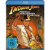 Indiana Jones-Jäger des verlorenen Schatzes