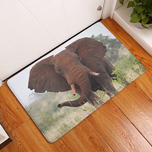 yj-bear-big-elephant-stampa-rettangolare-zerbino-entrata-mat-home-decor-carpet-kitchen-floor-runner-