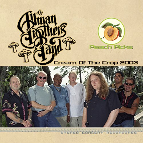 Revival (Live at Post-Gazette Pavilion, Pittsburgh, Pa, 7/26/2003) (Allman Revival Brothers)