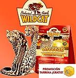 Wildcat | Cheetah | 500 g