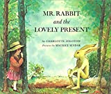 Mr Rabbit And The Lovely Present (Red Fox Classics)