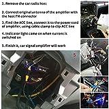 Mr.Ho Universal Auto Antenne Signal Verstärker FM AM für Fahrzeug 12V KFZ Audio Stereo Radio Autoradio Verstärker Antennenverstärker Booster Vergleich